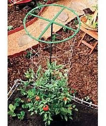 Tomato Tower with Nylon Trellising